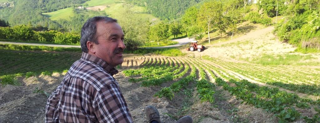 patate di montese dal contadino